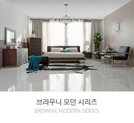브라우니(Brownie) 시리즈
